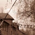 72ème anniversaire de la libération des camps de concentration et d'extermination